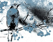 Bird Art, Robin Digital Painting, Painterly Style, Monochromatic Blue, Woodland Wildlife Wilderness, Home Decor, Wall Hanging, Giclee Print