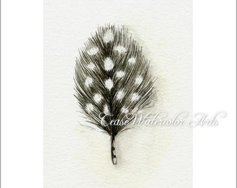 Guinea Feather,  watercolor 5x7  giclee print