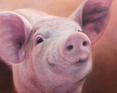 SAM DOLMAN  Limited Edition Pig Print