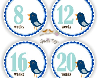 Pregnancy Stickers - Maternity Stickers - Baby Bump Labels - Personalized Pregnancy Belly Stickers