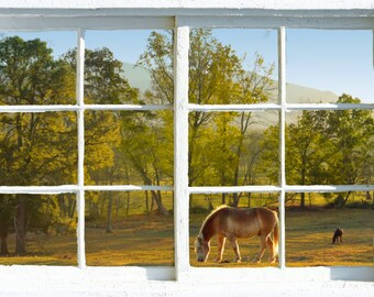 Wall mural window, self adhesive, Green Cades Cove window view - free US shipping