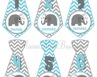 FREE GIFT, Baby Monthly Stickers Boy GIFT Monthly Milestone Bodysuit Photo Elephant Blue Grey Tie Stickers Month Sticker Photo Prop