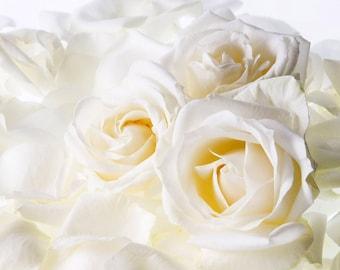 White Rose Bergamot Oil Perfume Vibrant Damask Rose Citron Bergamot Feminine