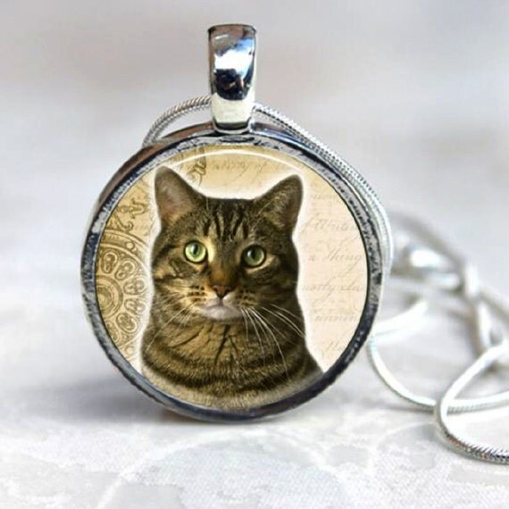 AMERICAN TABBY CAT  Pendant - Round Art Photo Silver Necklace