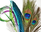16pcs - Peacock Combination Set, millinery, crafter, starter, feather samples, peacock eyes and swords
