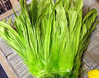 """LIME Rooster Tail feathers - 1 foot 8-10"""" long feathers"""