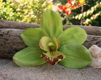 Orchid Flower Hair Clip-Weddings, Beach Destination Weddings, Vacations, Tropical Flowers, Hawaiian, Paradise, Floral Hair Clips