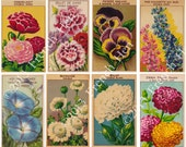 French Flower Seed Packet Labels-Digital Download