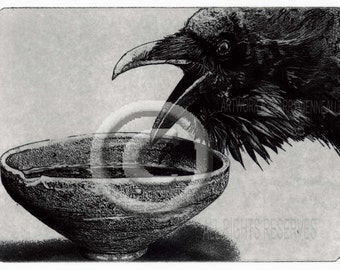 Raven artwork , Raven, Crow, Grail Quest,  Etching 2012,  5 inch x 7 inch