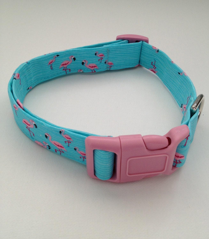 Magnetic Dog Collar Canada