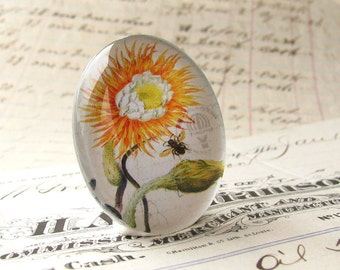 Exclusive, original artwork - sunflower and bee botanical drawing - handmade 25x18mm glass oval cabochon - orange, white, green flower