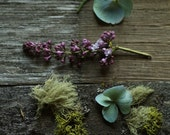 Moss on Wood Photography Still Life of Gray Fence Moss and Lilac Blossoms
