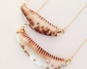 Gold Dipped / Capped Cowrie Cowry Tusk Necklace
