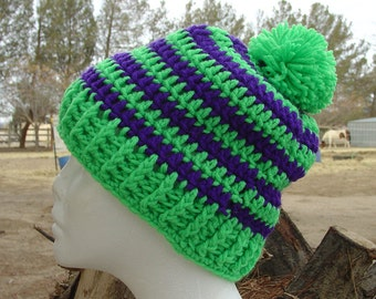 Handmade Crochet Beanie Cap Hat Green and Purple