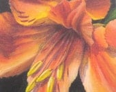 Floral Still Life Painting, Original Small Acrylic Painting of Flower, Orange Lily Art