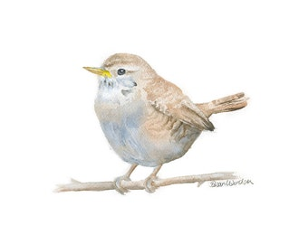 Wren Bird Watercolor Painting - 7 x 5 - Bird Painting - Woodland Animal - Giclee Print Reproduction