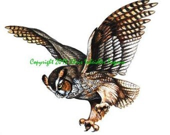Great Horned Owl Flying Tattoo Great horned owl   183  flyingFlying Horned Owl Tattoo
