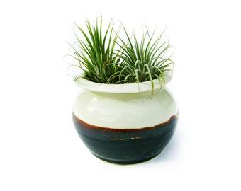 Mint Green + Brown Ceramic Succulent Planter
