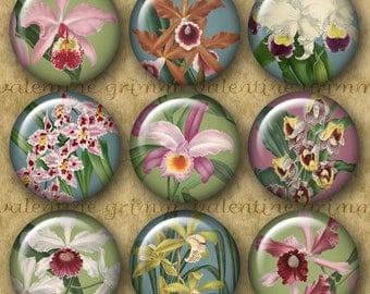 1 inch VINTAGE ORCHIDS Digital Printable Circles collage sheet for Jewelry Pendants Magnets Crafts...Beautiful Pastel Botanicals