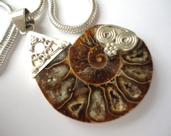 COOL 34.42cts Ammonite Fossil Pendant Necklace Sterling Silver detailing on Sterling Silver Chain