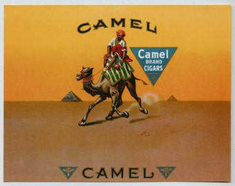 1920s Camel Camels Desert Antique Cigar Original Inner Cigar Label
