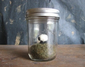 Felted wool sheep in a mason jar terrarium, felt sheep terrarium, wool farm animal, miniature terrarium, needle felted sheep, farm terrarium