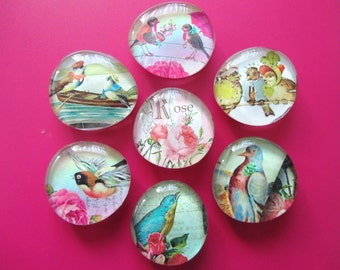 VICTORIAN BIRDS of a FEATHER Glass Magnets Super Strong