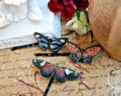 Butterfly Bobby Pin Set - Hair Accesories