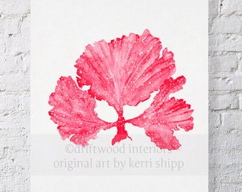 Seaweed II in Ruby Red Watercolor Print 8x10 - Sea Coral Art Print - Sea Fan Art Print - Coral art by Kerri Shipp