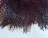 ringneck pheasant rump feathers Purple RPRD-19 craft feathers,fasinators,