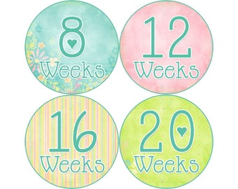 Pregnancy Announcement Photos, Belly Stickers, Pregnancy Photo Prop, Pregnancy Stickers, Pregnancy Bump Stickers, Pastel (P005)
