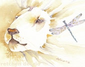 WHITE LION watercolor aceo giclee PRINT spirit totem animal - Free Shipping