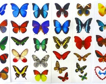 Temporary Butterfly Tattoos - All 16 Sheets (Free Shipping!)