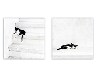 Sale - Black on White Set, home decor, white decor, white and black, Greek cats, Greece Photography - Set of Two Fine Art Photographs