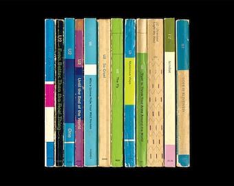 U2 'Achtung Baby' Album As Penguin Books Poster Print Literary Print