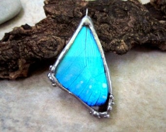 Real Butterfly Wing Pendant, Blue Morpho Butterfly