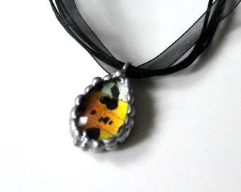 Sunset Moth Teardrop Pendant, Real Butterfly Jewelry