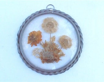 Vintage Brown Wildflower Wall Hang Glass Pressed Dried Flowers Lasting Impressions Real Flowers Vtg Pewter Round Glass Wall Hang Sun Catcher