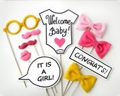 BABY SHOWER GIRL Photobooth Props - Baby Girl Plastic Photo booth Party Props - Family, friends, baby party - Set of 10 props