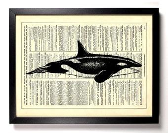Orca Whale, Ocean, Home, Kitchen, Nursery, Bath, Office Decor, Wedding Gift, Eco Friendly Book Art, Vintage Dictionary Print 8 x 10 in.