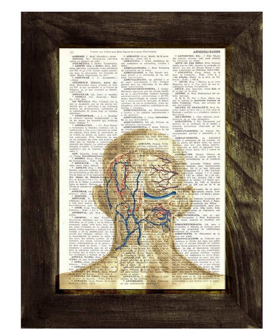 Spring Sale Head and neck Anatomy Study - Dictionary Book Page Print - Human Anatomy Art on Upcycled Book Page BPSK084