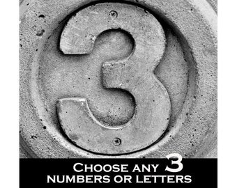 Choose any 3 Numbers and Dates- Alphabet Photography  Individual 4x6 Prints , 4x6 photo numbers