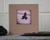 Crow Note Card, crow print, recycled card-stock, small crow photo, crow card, crow in flight, corvid card