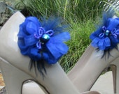 Blue in royal shoe clips