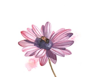 Daisy Painting - Print of Watercolor Painting - bee flower art- 5 by 7 print