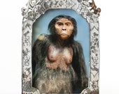 I'm Ape Over You. In a chippy, rusty, distressed frame 5 x 7.5