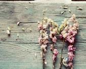 pink flower art, rustic flower print, pink and teal decor, farmhouse decor, country cottage decor, flower nursery art, dried flower art