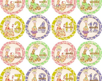 Baby Girl First Year Weekly Growth Milestone One Piece Boydsuit Age Stickers Giraffe 1 - 52 Weeks FREE Priority Shipping Upgrade