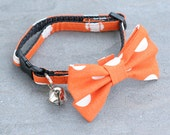 Cat Collar - Orange Large White Polka Dots - Matching Bow Tie and Flower Available