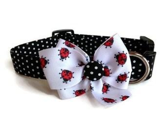 Ladybug Collar size Medium